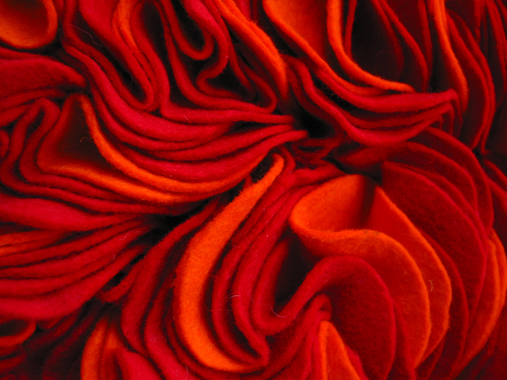 martinazua-martin-red-carpet-rug-flower-rose-felt