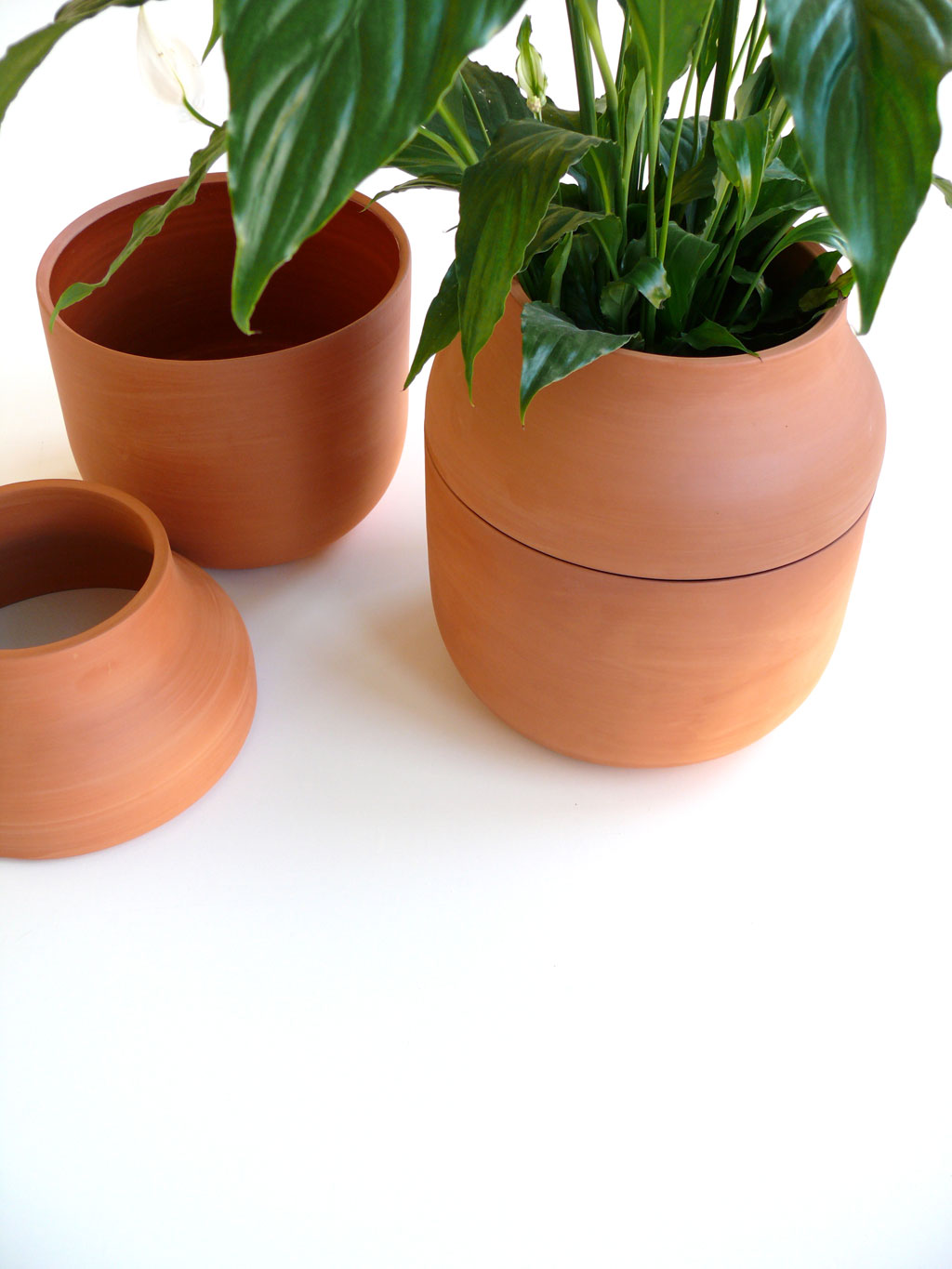 flower-pot-martinazua
